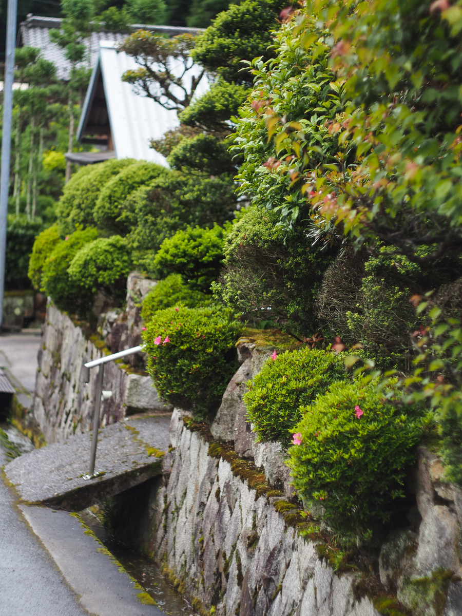 Vancouver Island Blacksmith in Japan: Photo Essay on Japanese Gardens & Plants.